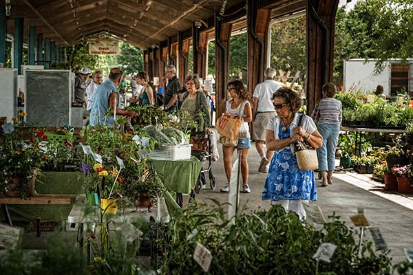 Farmers Markets - Greensboro, NC
